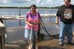 King Mackerel Fishing